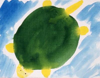 11歳男の子緑の亀